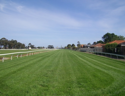 Environmental Waterway/Refuge, Pakenham Racecourse, Victoria, Australia
